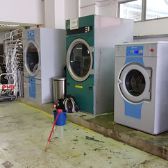 Dyson In-House Laundry