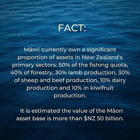 Maori FACT.png