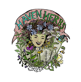 haven_herbs_color-transparent_lo-res.png