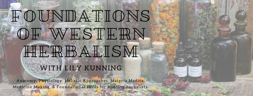 Foundations of Western Herbalism-8.png