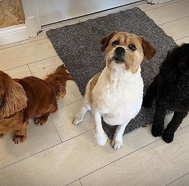 Group spa day with Bella, Tilly & Charli