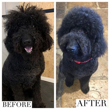 Before & after of the gorgeous Florence