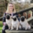 me&pugs.jpg