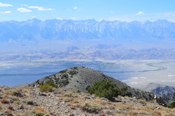 On Inyo Mountains above L.J.