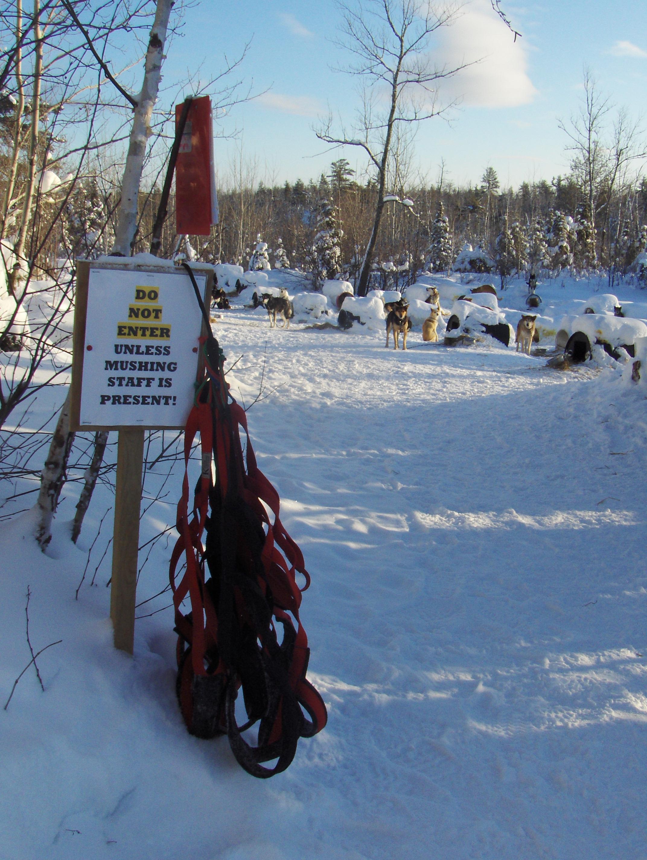 musher camp 071.JPG