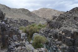 Climbing Darwin Canyon