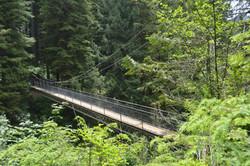 Drift Creek suspension bridge