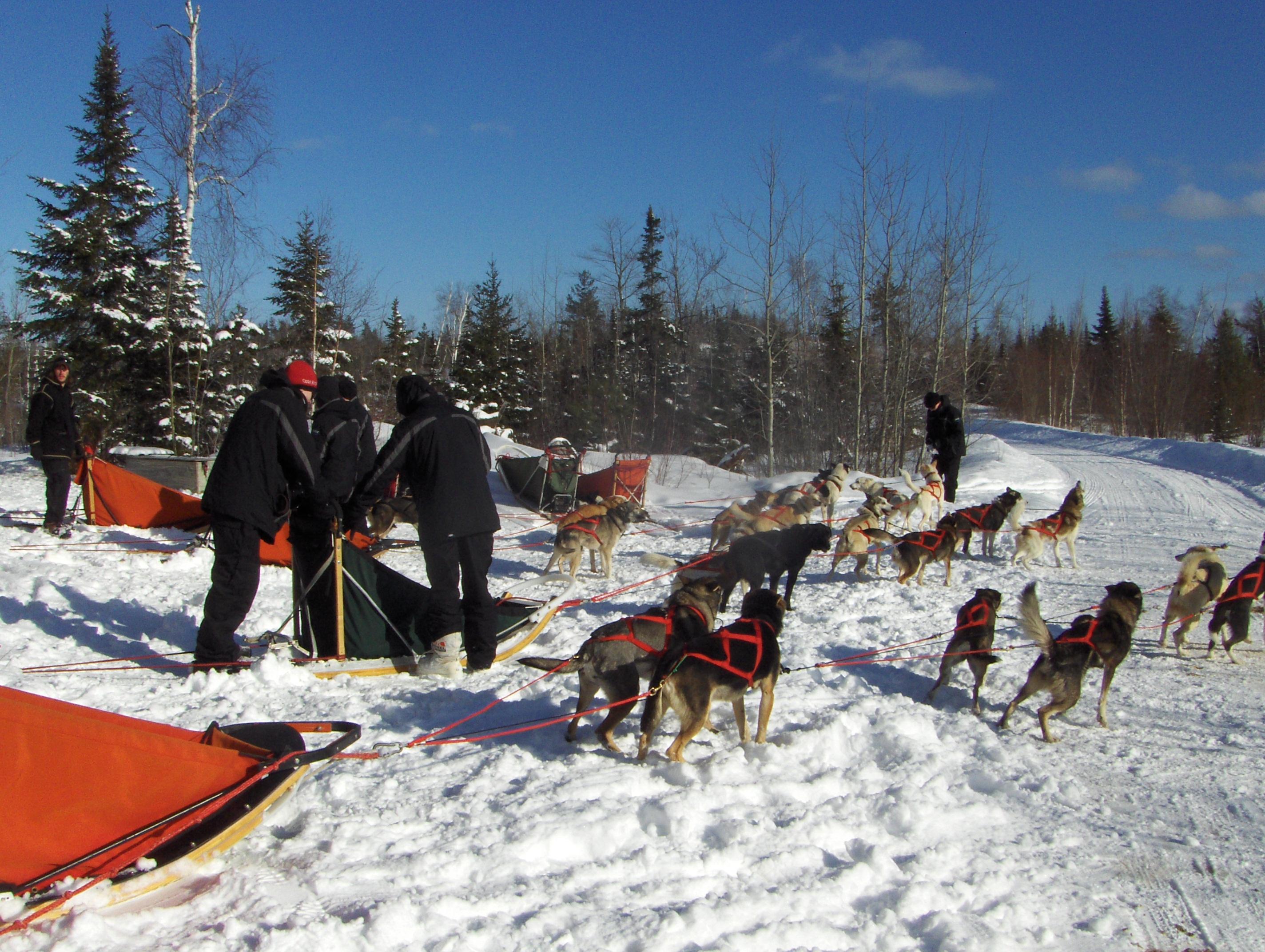 finch and dog trek 060.JPG