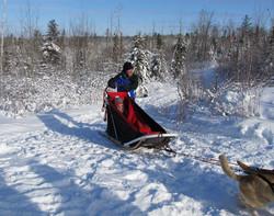 sled run