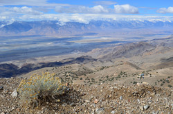 The Sierra and Owens Valley