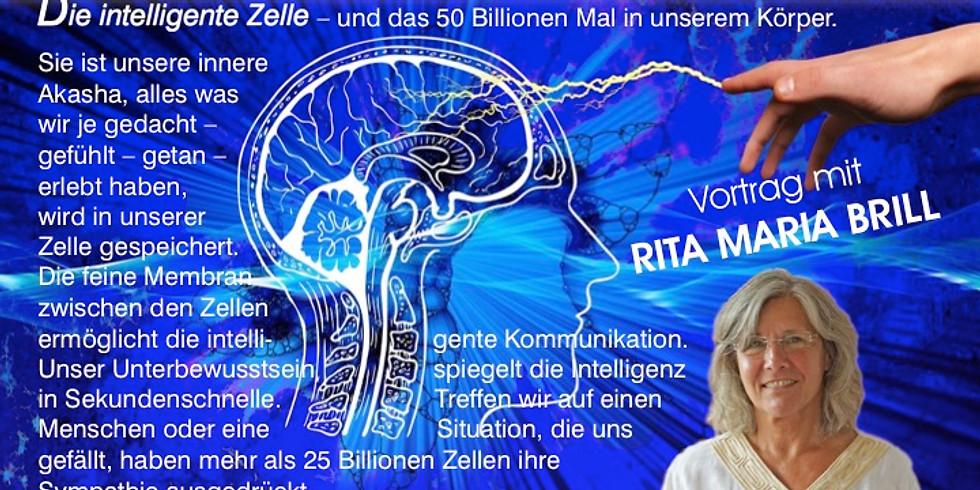 Intelligente Zellkommunikation