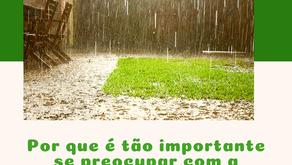 Por que é tão importante se preocupar com a drenagem de jardins?