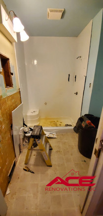 Shower and floor pull-out.jpg