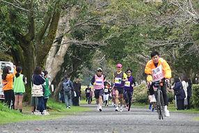 ブラインドランの写真4 先導自転車