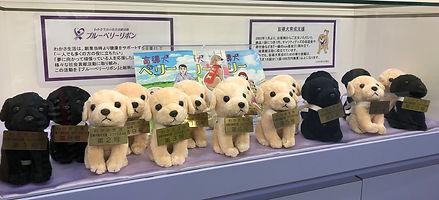 総合受付に飾られた16頭の盲導犬マスコットの画像