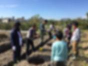 ブルーベリーの苗木を植樹の様子