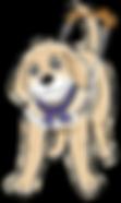 盲導犬ベリー①v.png