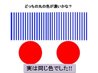 (正解)どっちの丸の色が濃いかな?.png