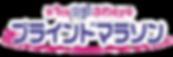 第1回京都ふれeyeブラインドマラソン