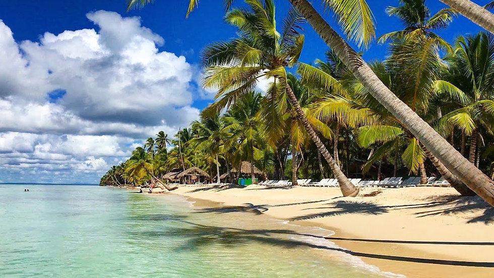 Incredible Visit to Pristine Saona Island