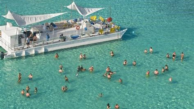 Marinarium - Snorkeling with Sharks and Rays (Click for Details)