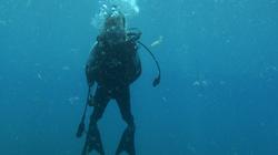 Harry Scuba Dive