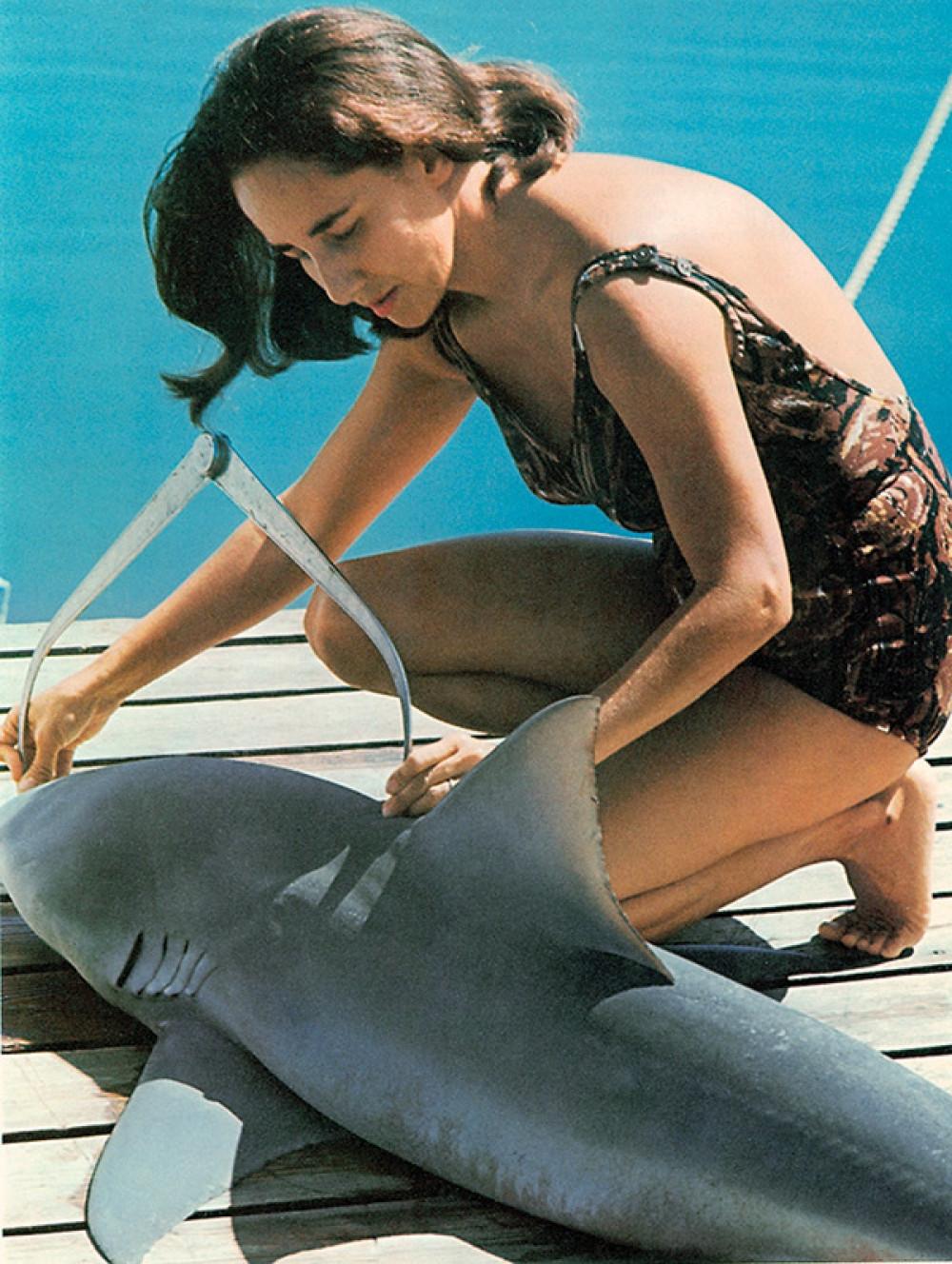 Genie&shark.jpg
