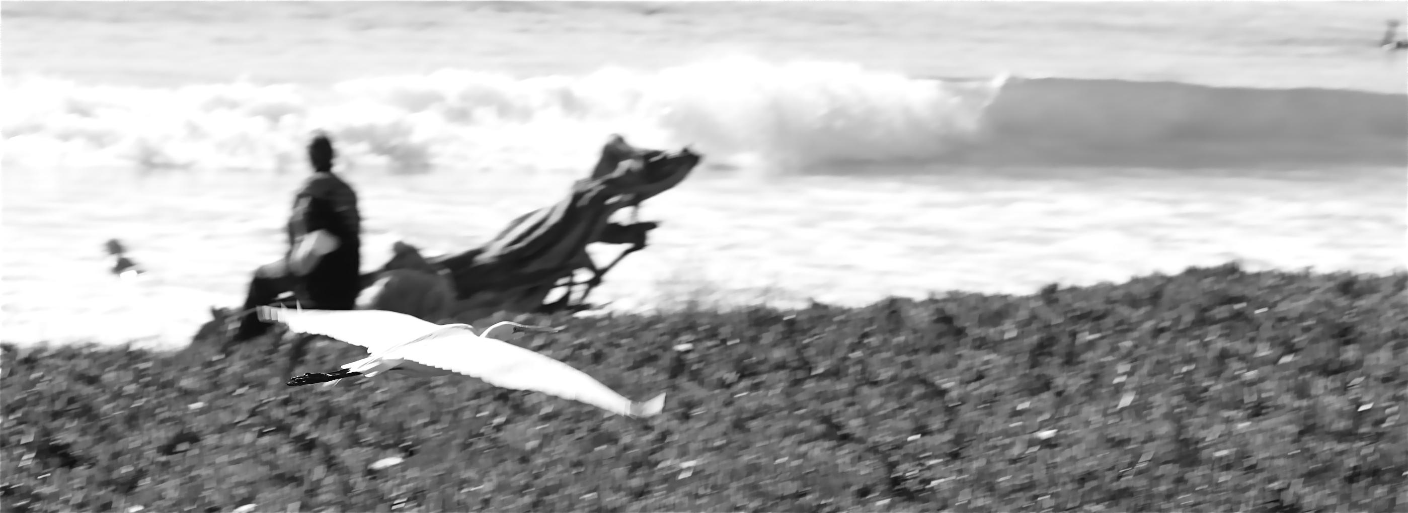 EGRET+SURF