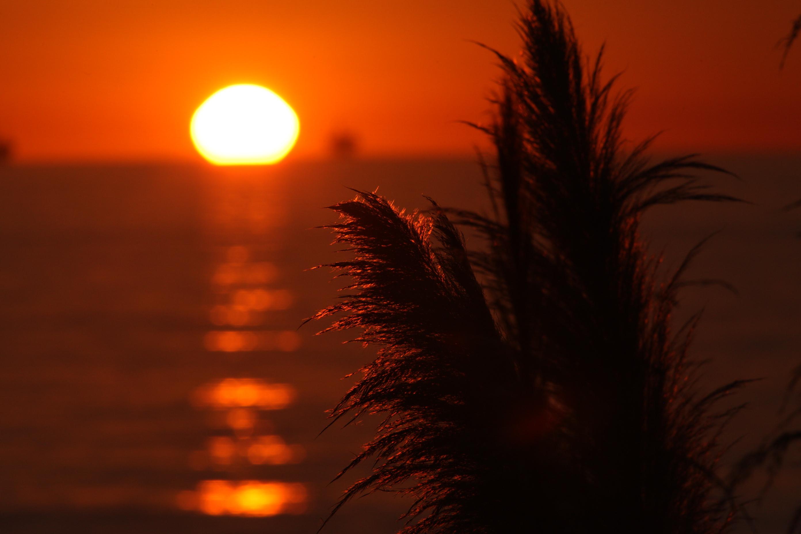 Carp+Bluffs+Sunset+1