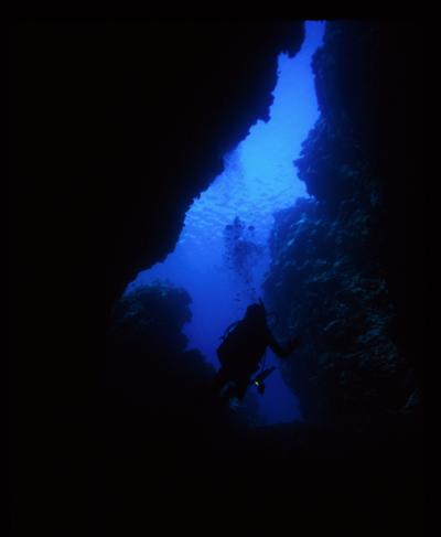 Palau+Documentary