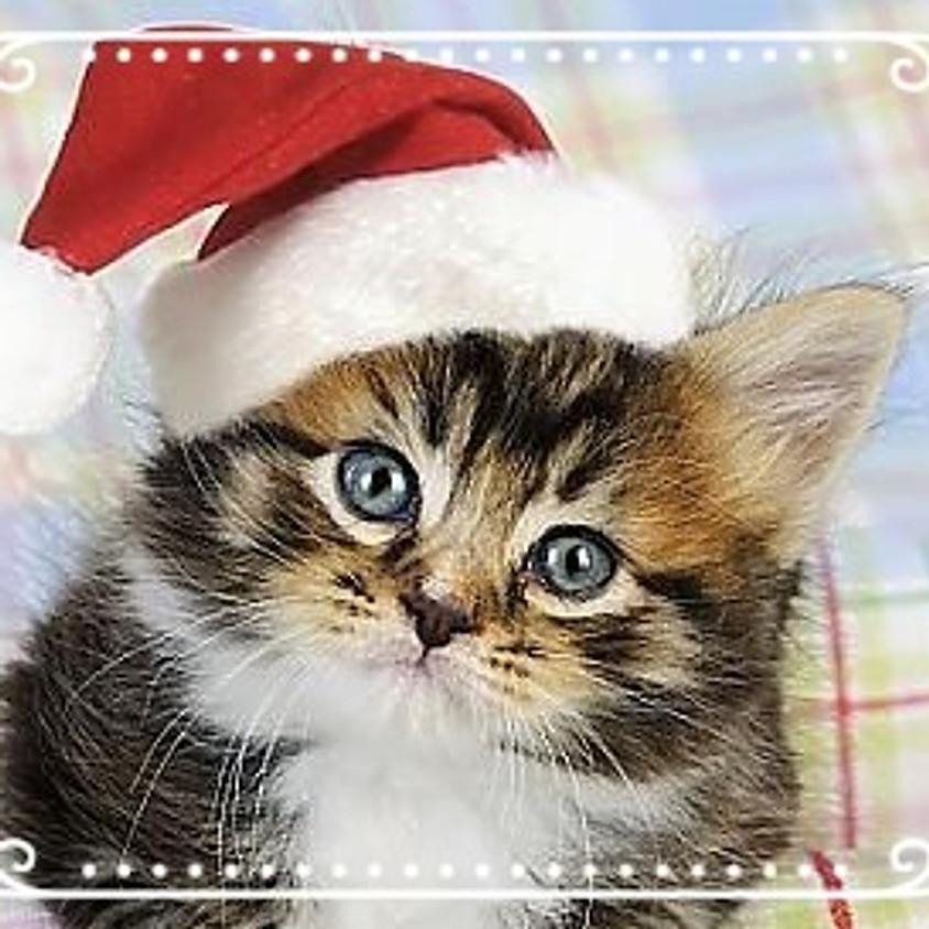 Holiday Gift Exchange! With Kitties! (1)