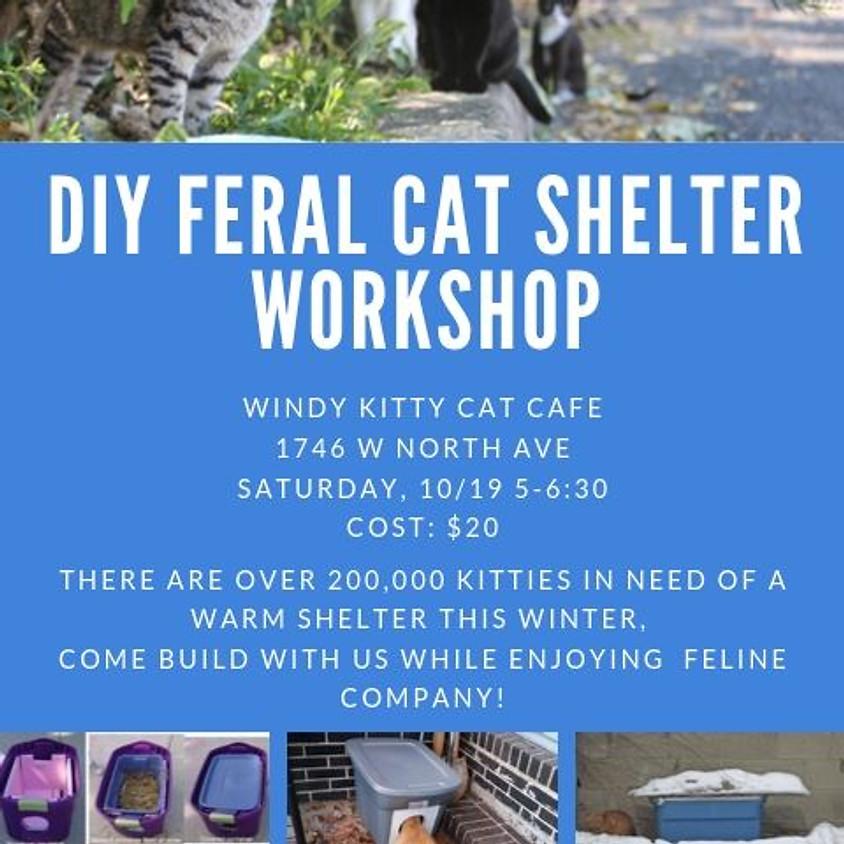 Cat Shelter Building Workshop!