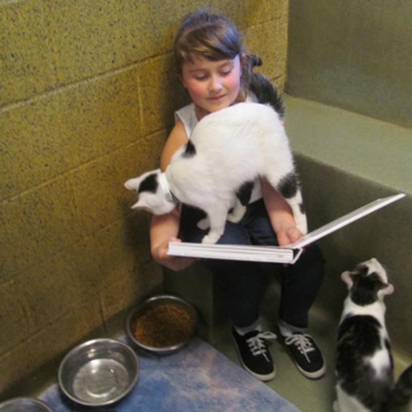 Kids Reading to Kitties!