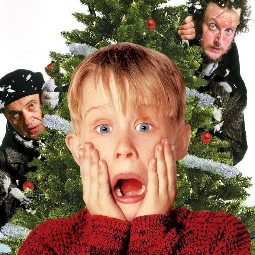Holiday Movies with Cats! Home Alone