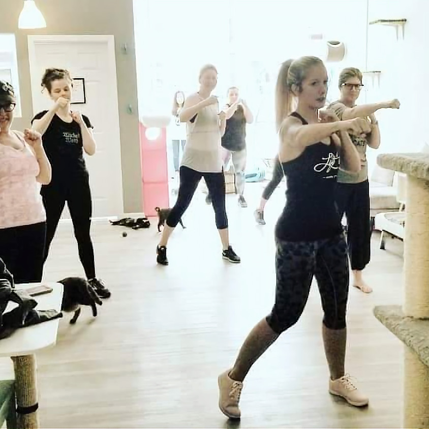 Cardio Kickboxing with Kittens! by Destiny and Tim Sample