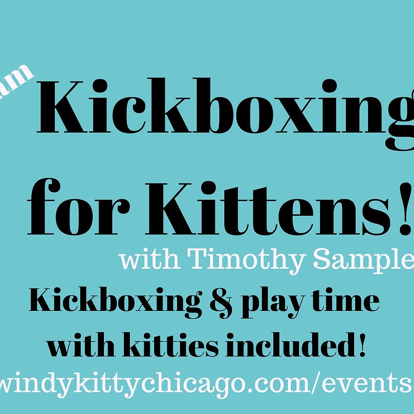 Kickboxing for Kittens!
