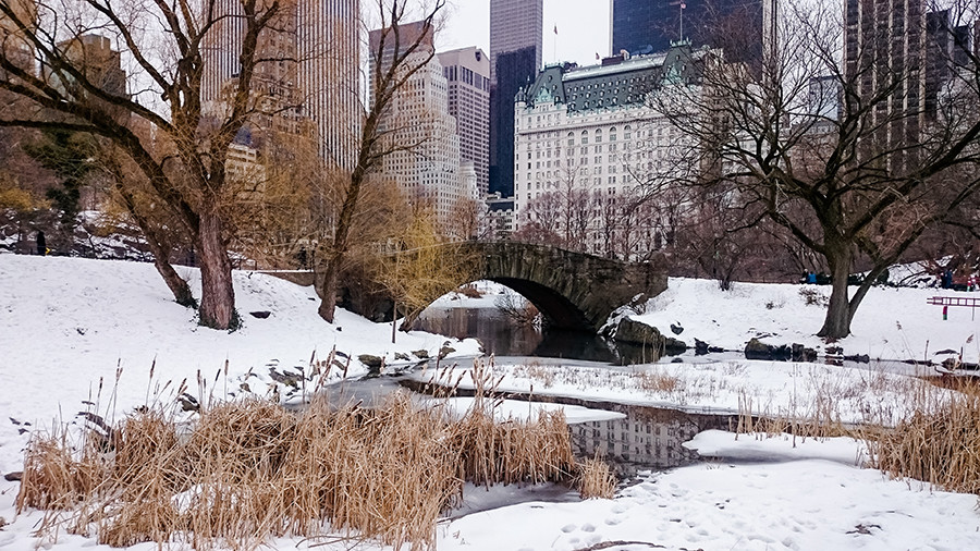 Verschneiter Central Park New York