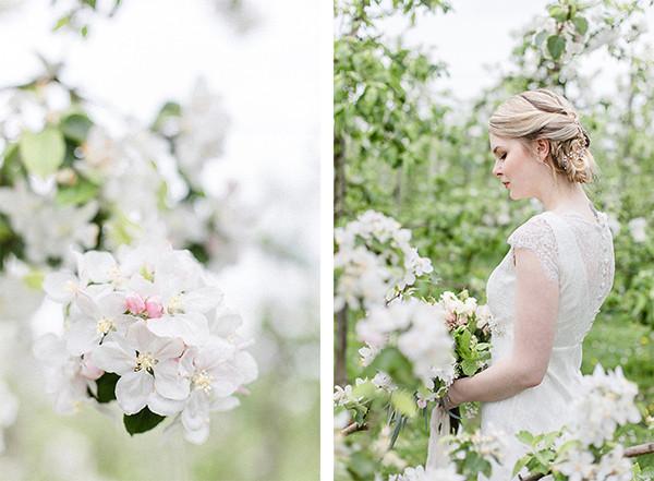 Brautpaarfotos zur Apfelblüte in Jork