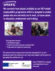 ESF employment scheme.jpg