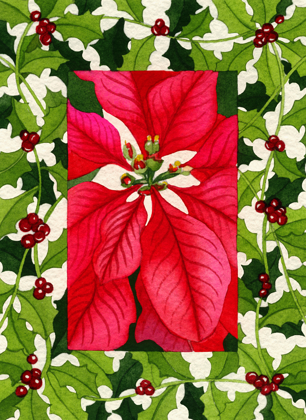 Poinsettia and Holly #1