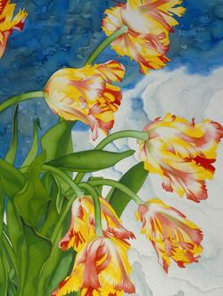 Parrot Tulips and Lalique vignette #36