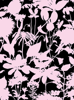 Wildflower Silhouette #3 #169