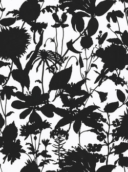 Wil.dflower Silhouette in black and white #170