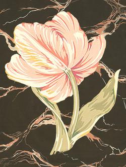 Tulip on Marble #2 #52