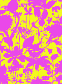 Wildflower Silhouette pink and yellow #123