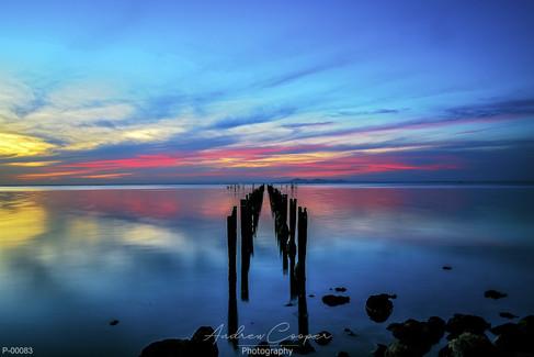 P00103 - Magenta Sunset