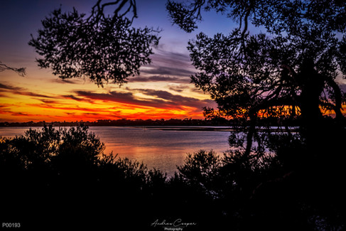 p00193 - River Sunset