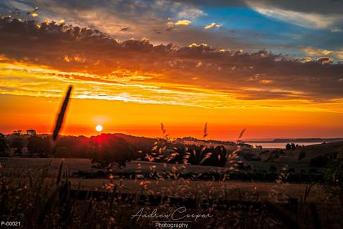 P00021 - Firey Sunset