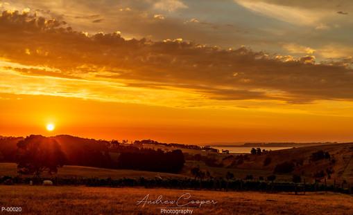 P00020 - Firey Sunset