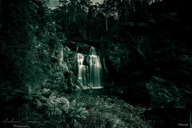 p00144 - Windter Fall